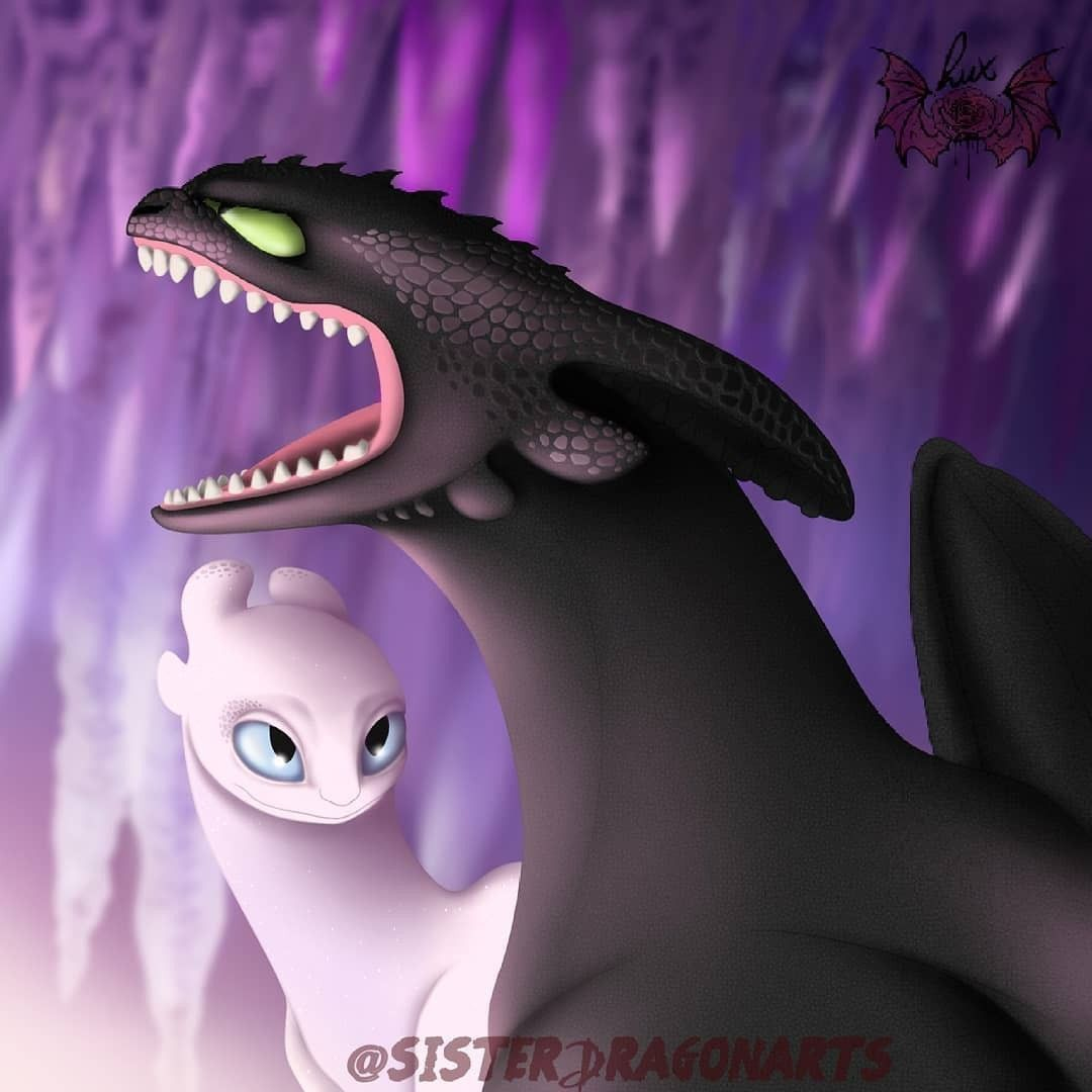 I love Toothless and the Light Fury together.♥ How train