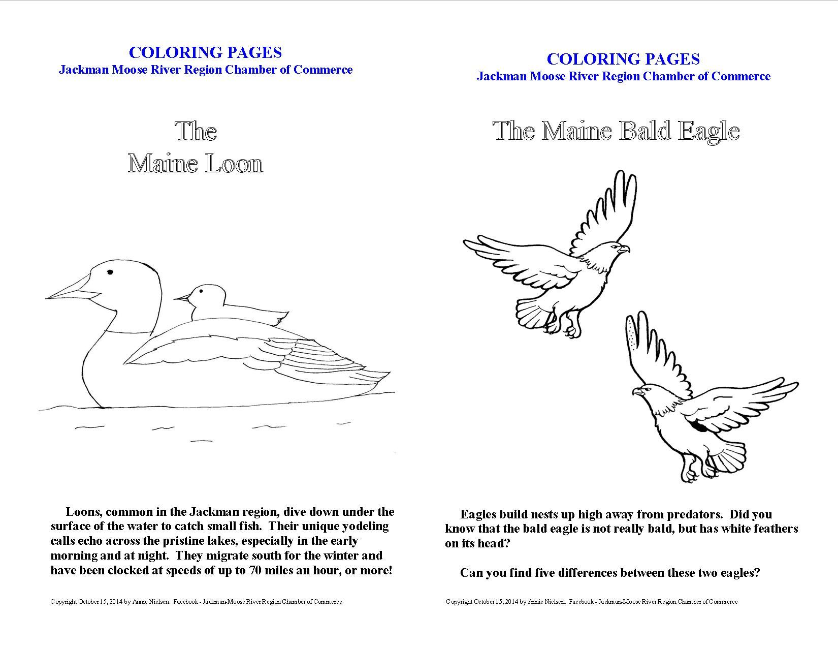 Coloring Pages for Kids ~ The bald eagle and the loon | Kids Stuff ...