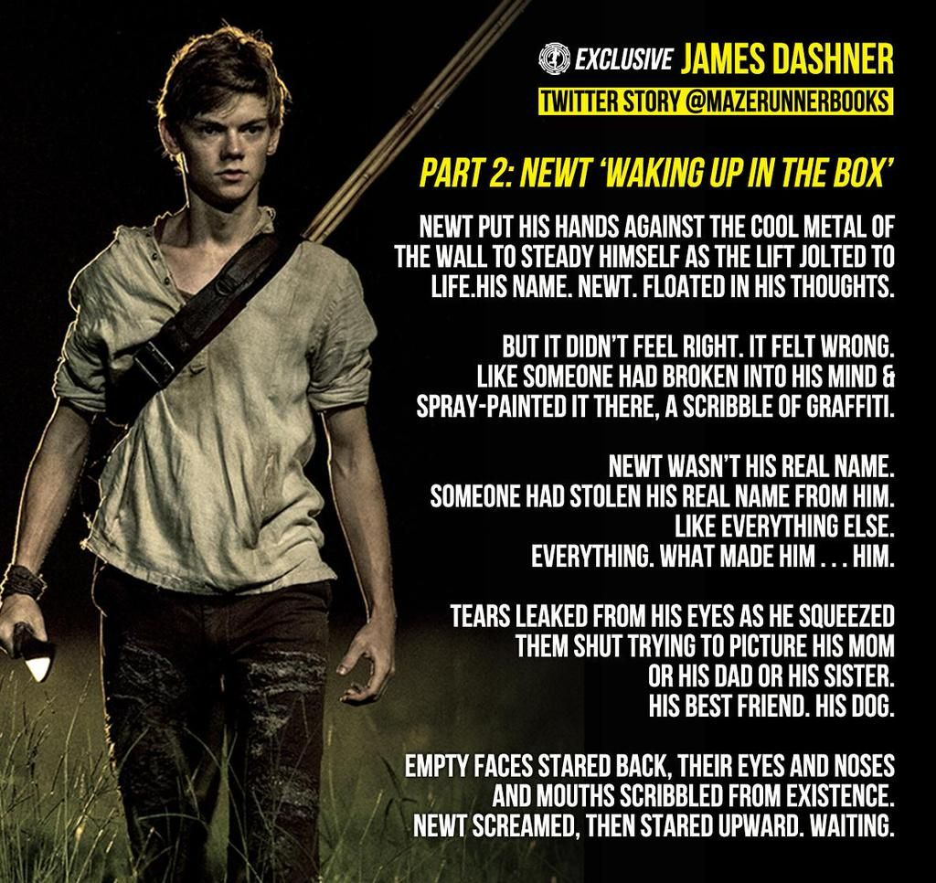 New in the Box- by James Dashner. But you know technically he woke up in the maze not in the box