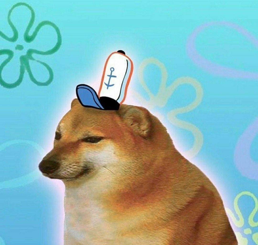 Pin By Nando On Stuff Hannah Shows Me Cute Memes Funny Memes Doge Meme