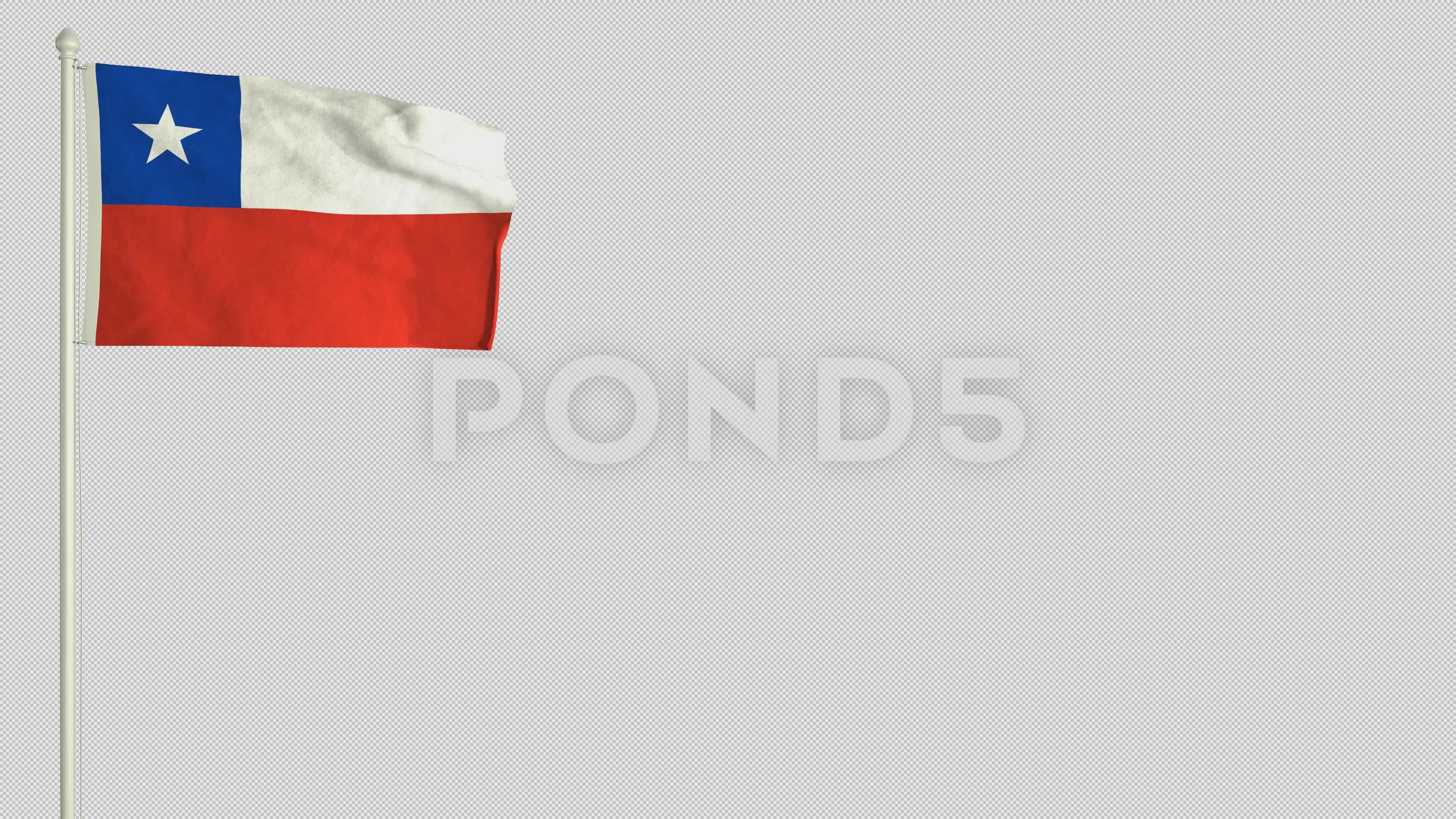 Chilean Flag Waving In The Wind With Png Alpha Channel Stock Footage Waving Wind Chilean Flag Chilean Flag Flag Alpha Channel