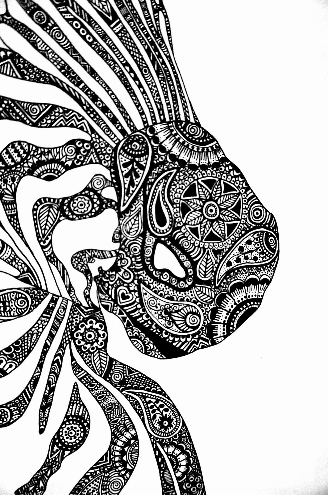 Zebra drawing Close up mandalazentangle