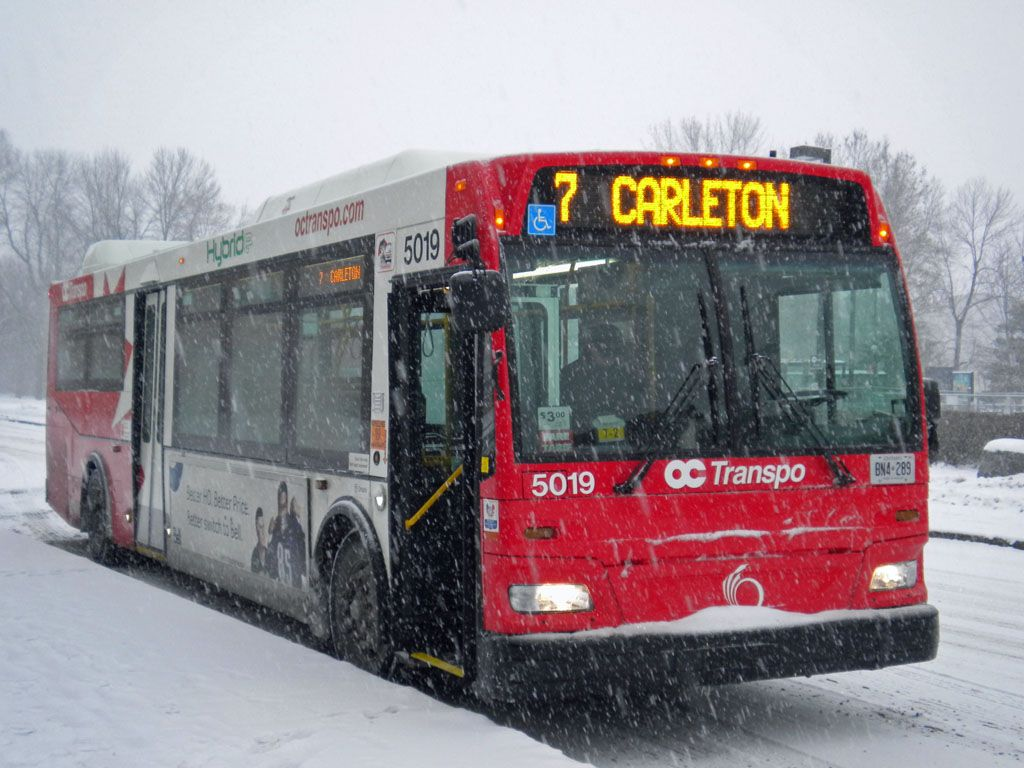 Image result for oc transpo bus carleon