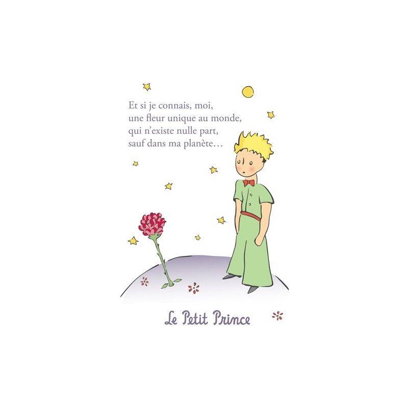 Carte Postale Le Petit Prince Une Fleur Unique Au Monde 2