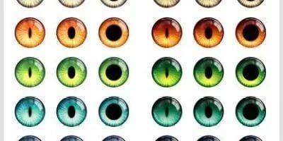 Распечатать глаза для поделки Трафареты глаз для вырезания