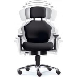 Photo of Intervertebral discs swivel chairs