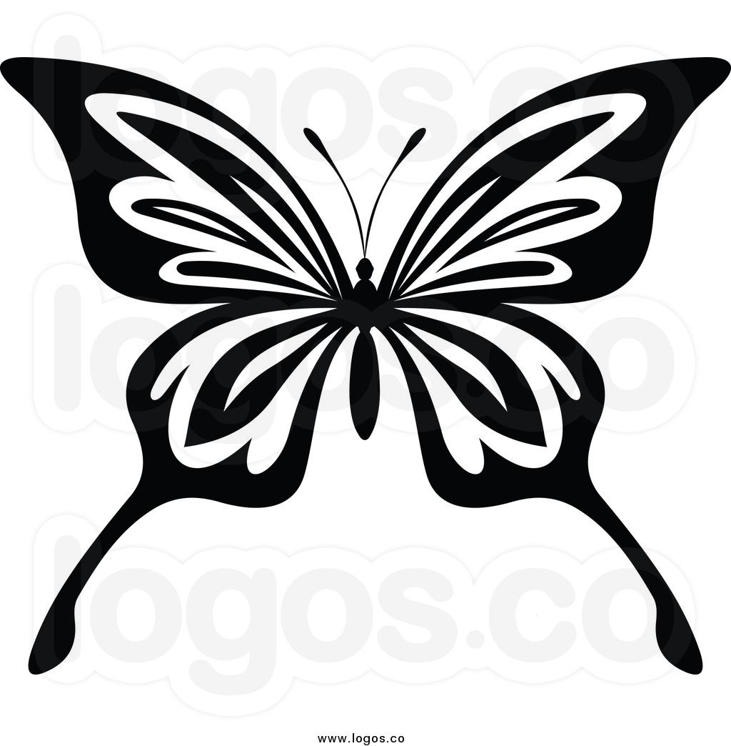 Butterfly drawings black and white of a black and white
