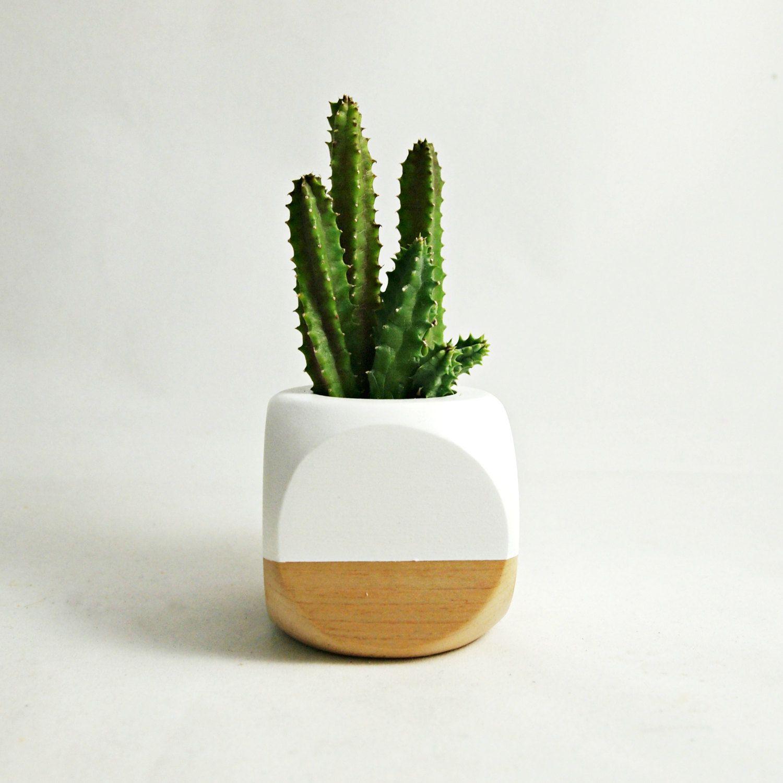 Geometric succulent cactus planter white wood for Wooden cactus planter