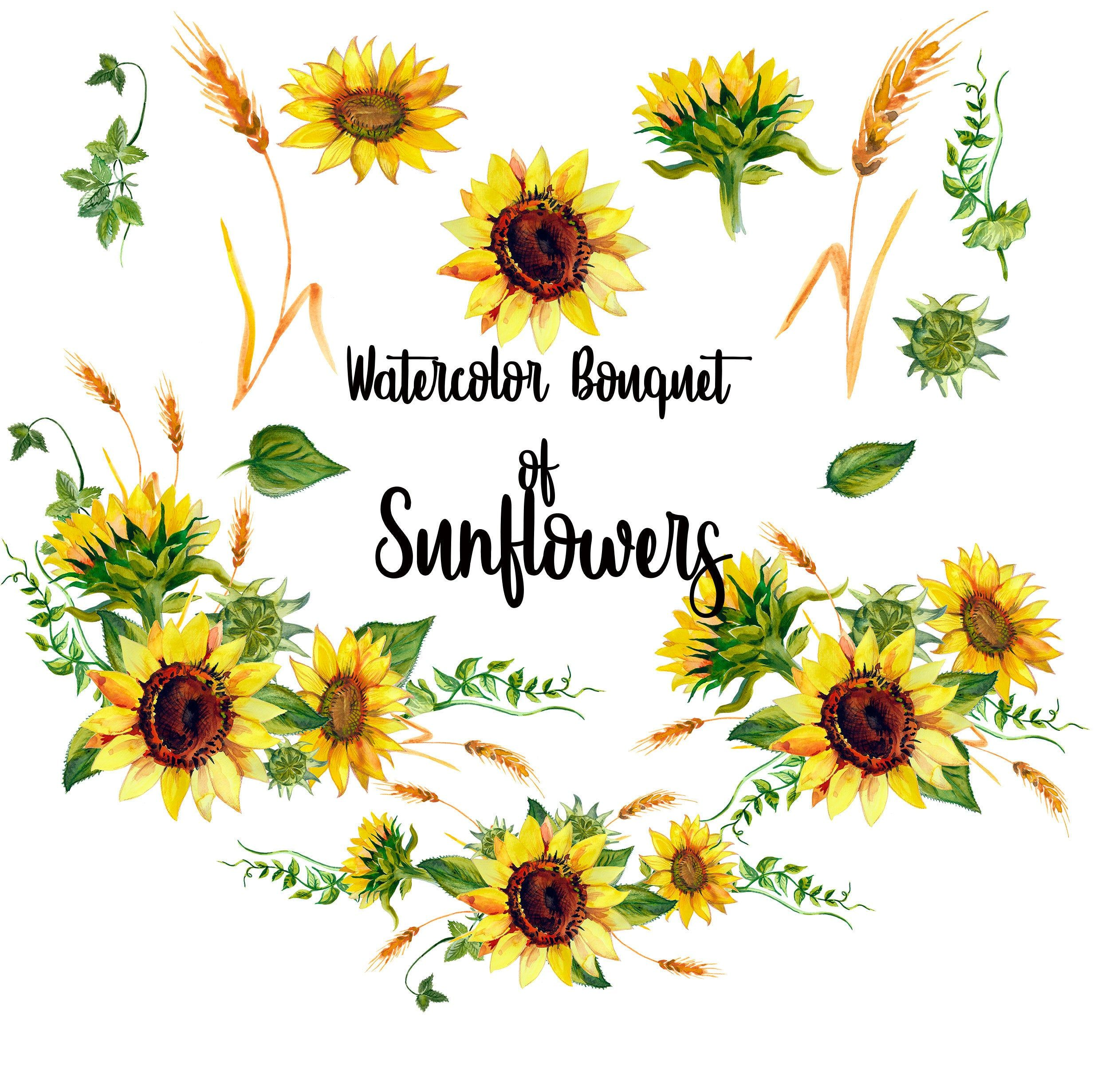 Watercolor Bouquets Of Sunflowers Clipart Wedding Sunflowers