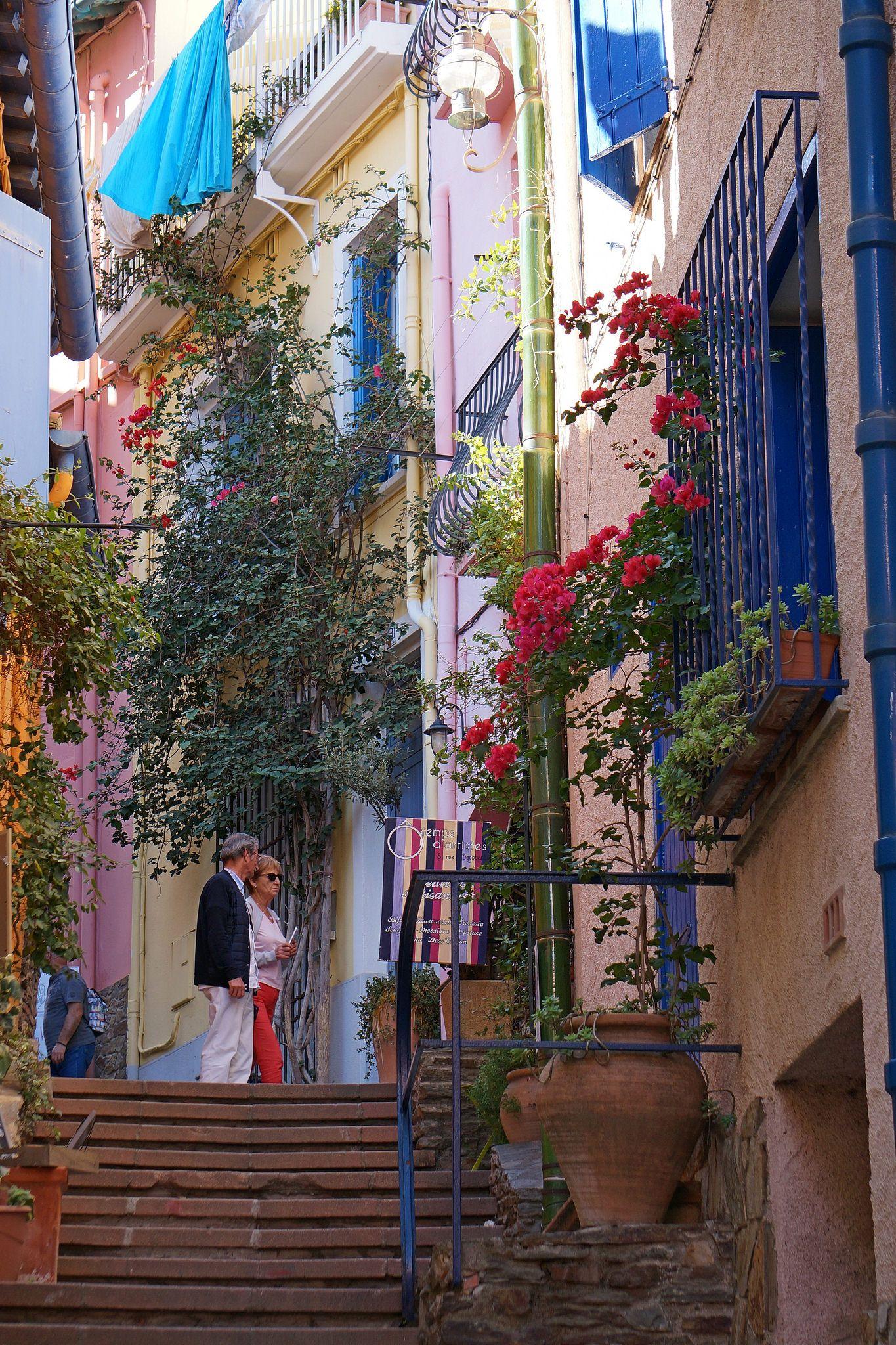 Les Ruelles De Collioure, Sont Magnifiques, Très Colorées, Agréables à  Arpenter, Galeries
