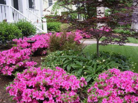 Spring Richmond Va Landscape Designer Gardens By Monit Llc