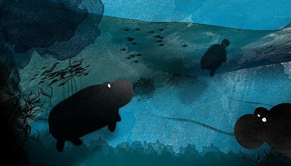 Hippopotamidae Picturebook on Behance
