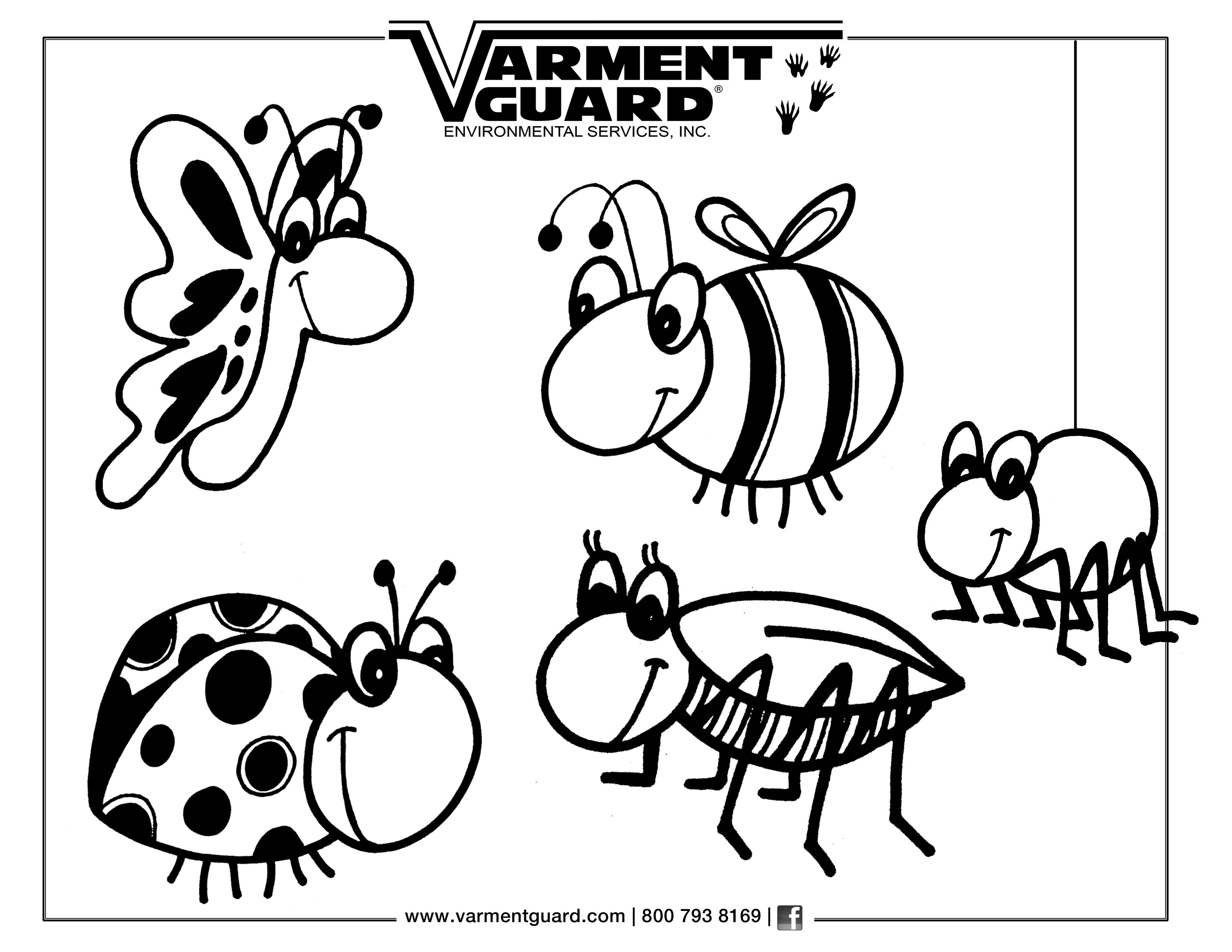 Free bug coloring page. We would love to see these when they are ...