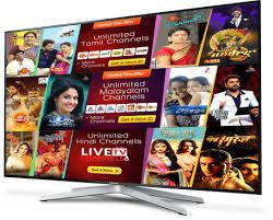 Roku Indian Channels - Watch live streaming Malayalam, Tamil