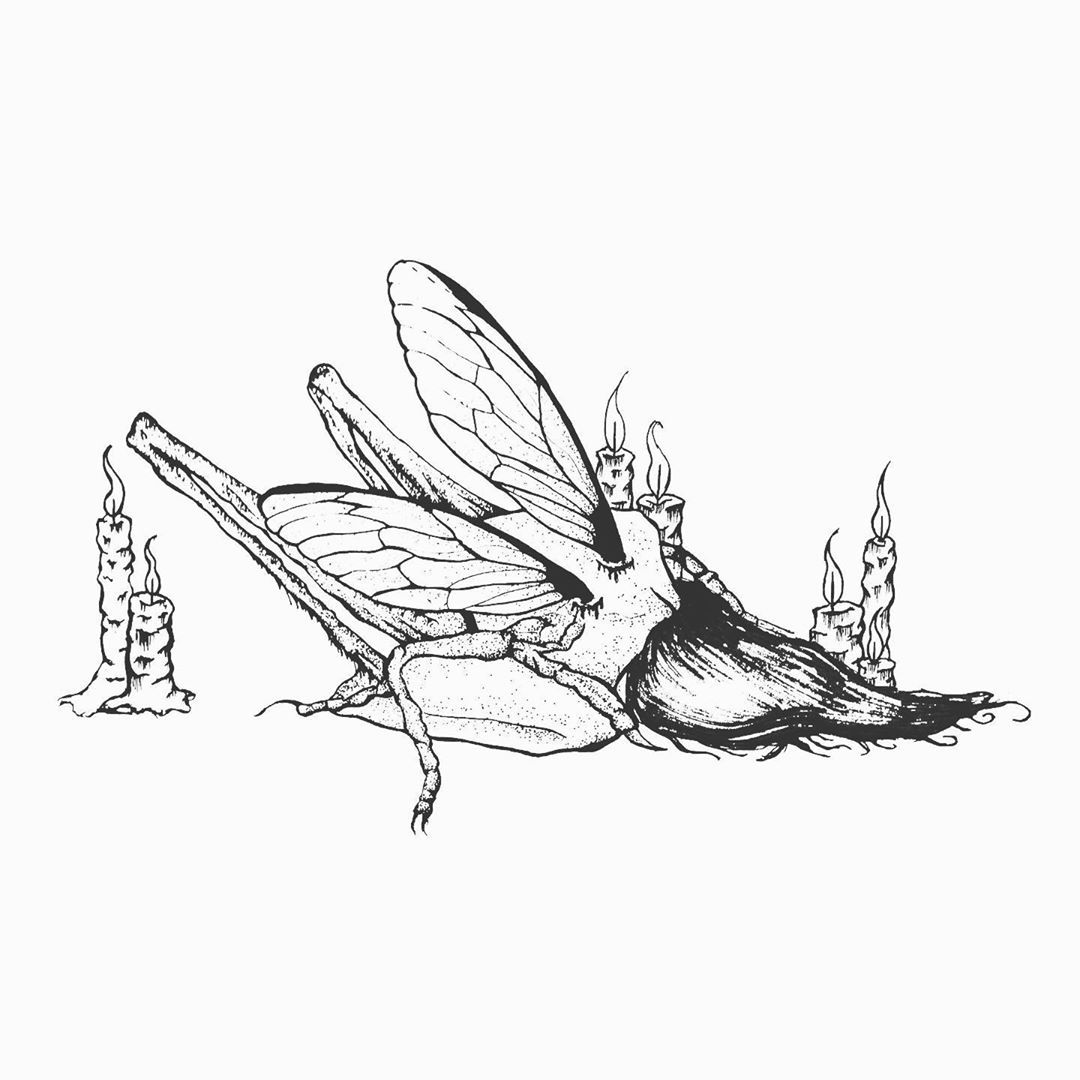Acrididea  #color #creative #follow #drawing #illustration #instaart #love #inkwork #amazing #tattoo #goth #insect #black #ink #insecttattoo #photoofday #locust #photos #sketch #candletattoo #girltattoo #originalartwork #tattoodesign #blackwork #blackworkillustrations #art #blackandwhite #candles