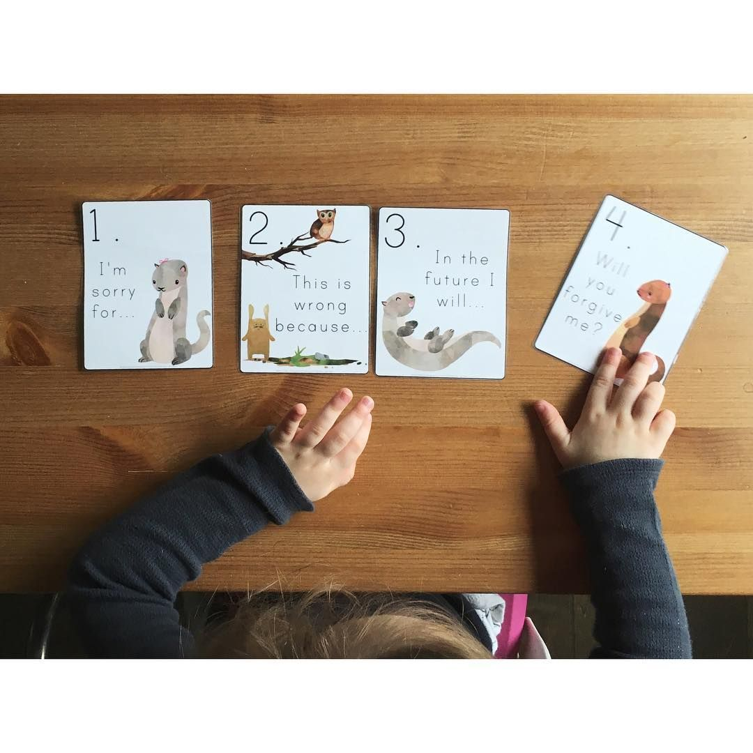 Four Part Apology Sorting Cards