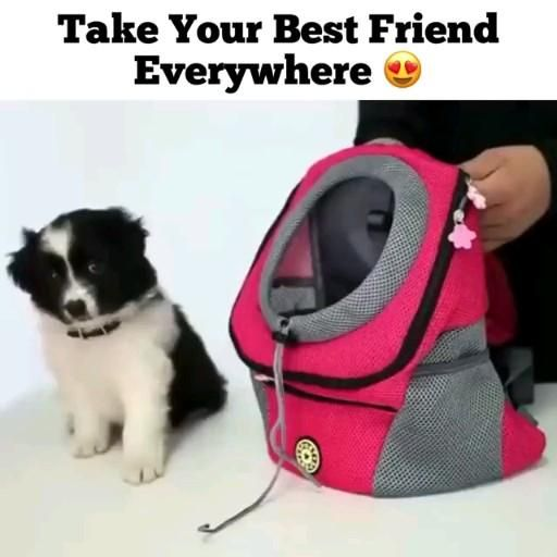 Photo of Perfect Pet Backpack Carrier🐕.               (Use 'Pin20' code for 20% discount)