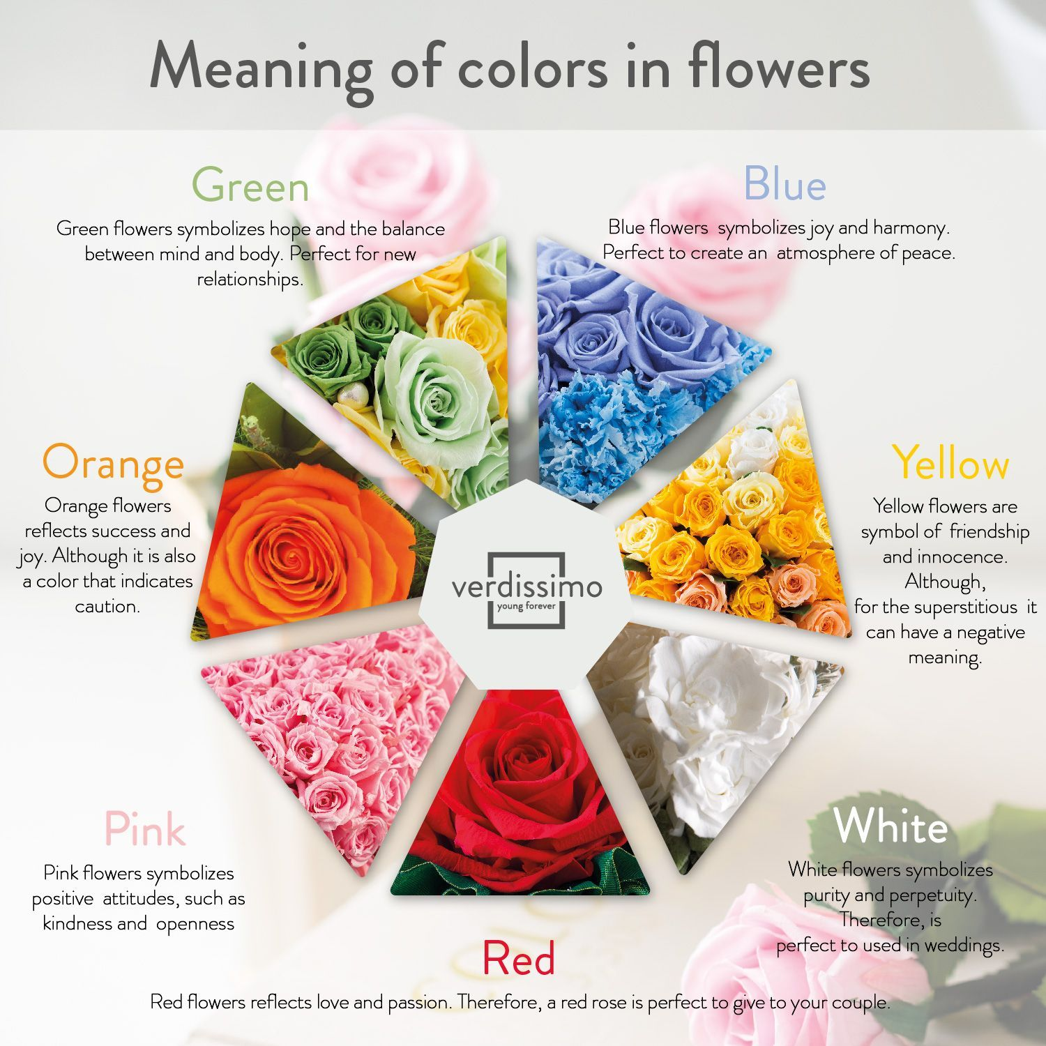 Roses Are One Of The Flowers With The Most Meanings They Are The Symbol Of Love Sweetness Friendship Innoc Rose Color Meanings Flower Meanings Rose Meaning