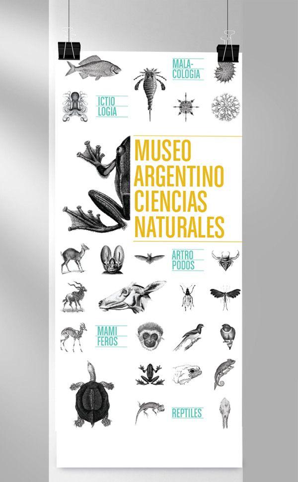 Museo Argentino de Ciencias Naturales by Lucas Rod, via Behance ...