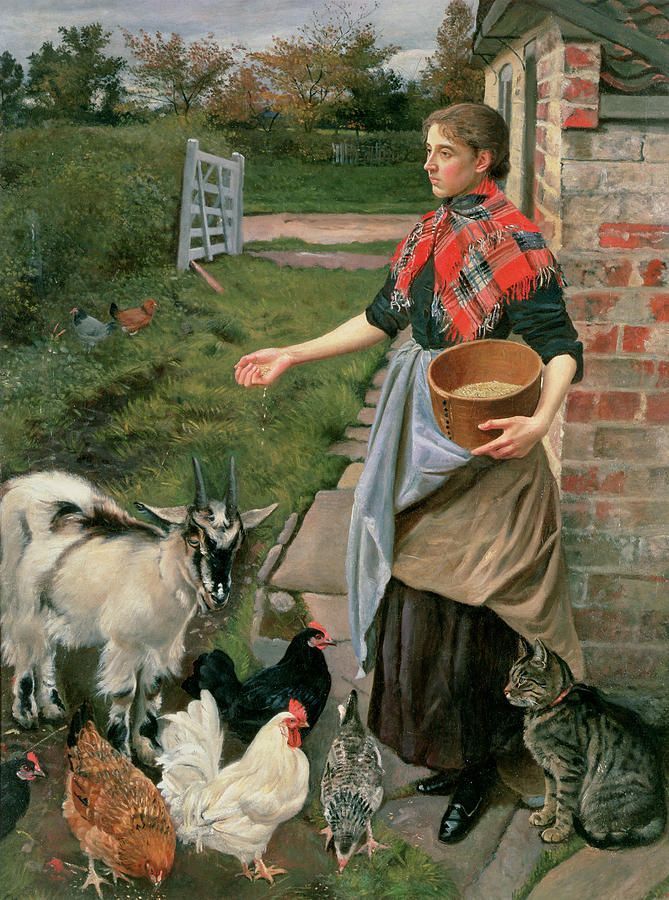 Feeding the Chickens Painting by William Edward Millner - Feeding the Chickens Fine Art Prints and Posters for Sale
