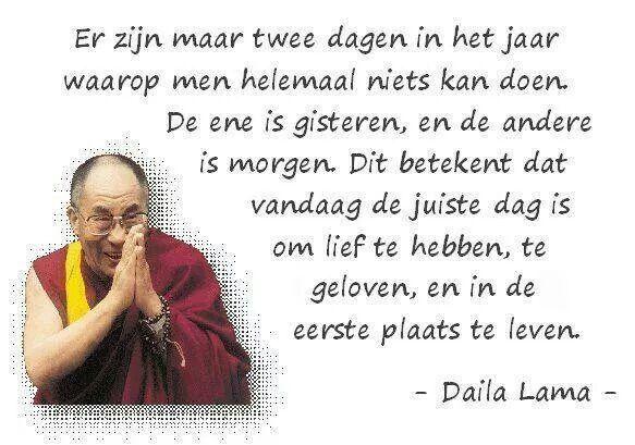 Daila Lama Spiritueel Beroemde Mensen Citaten Spreuken
