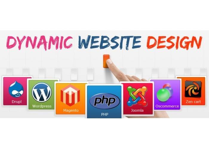 Web Development Company In Delhi Website Design Web Design Web Development Website