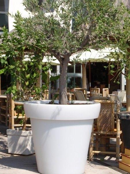 Bloom pot met verlichting   Tuin potten & bakken   Pinterest