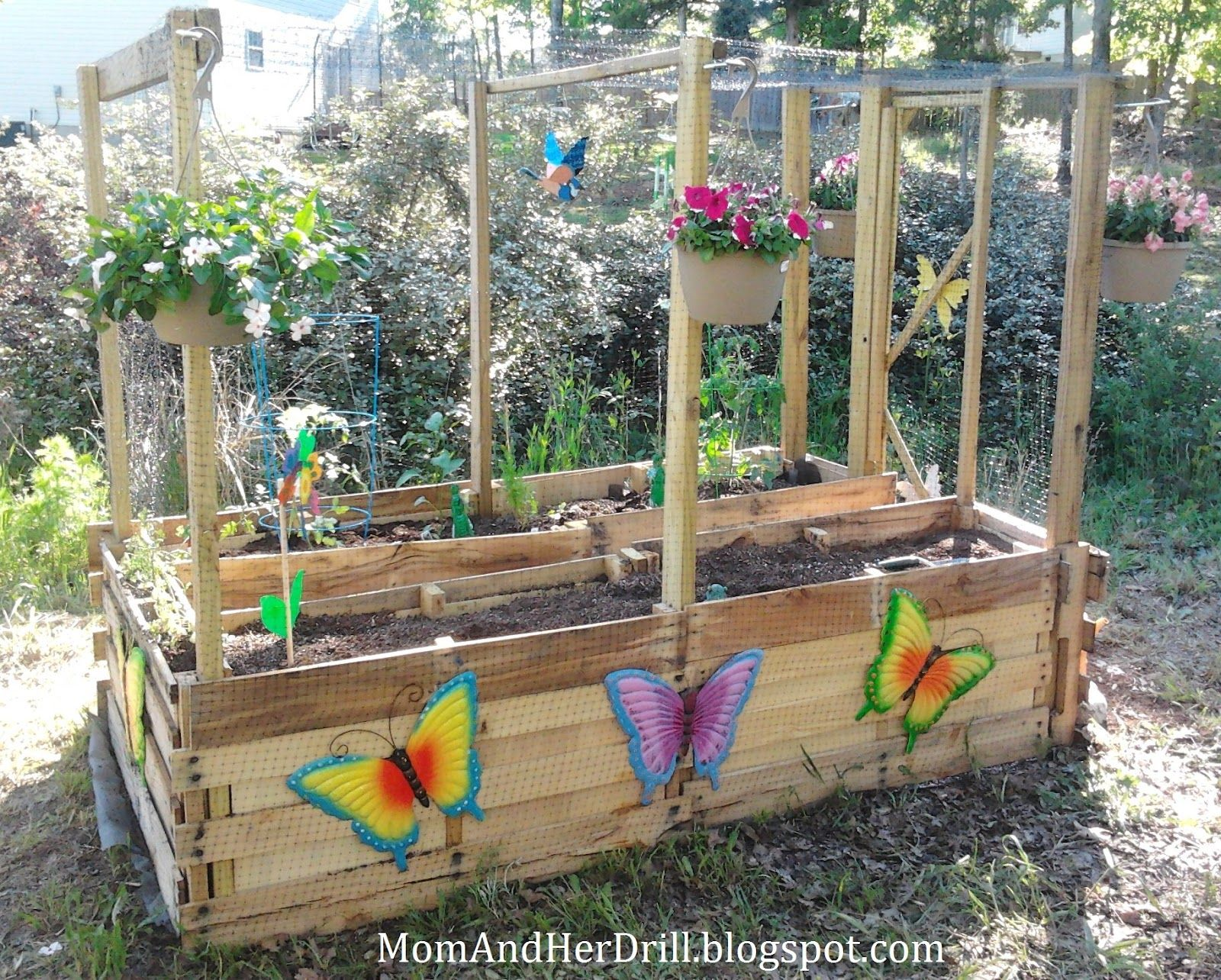 Kid size critter proof veggie garden perfect for school for School garden designs