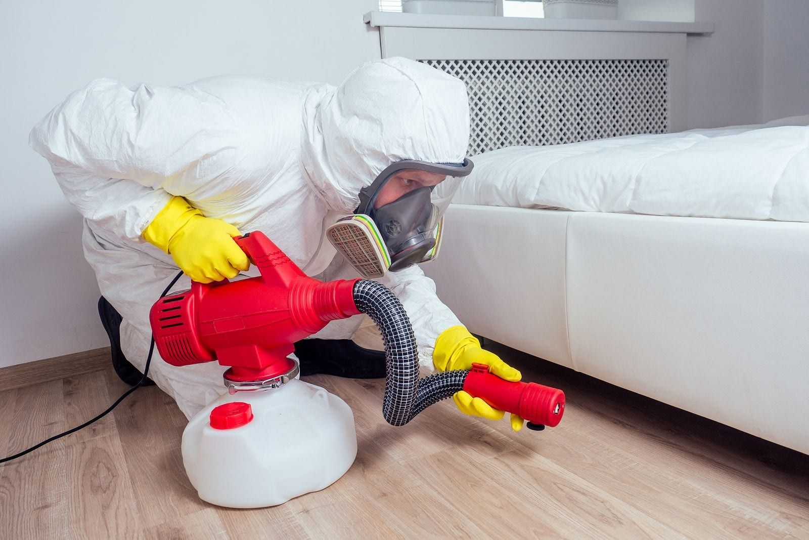 Who Is Responsible For Pest Control In A Rental Property Bed Bugs Treatment Bed Bugs Pest Control