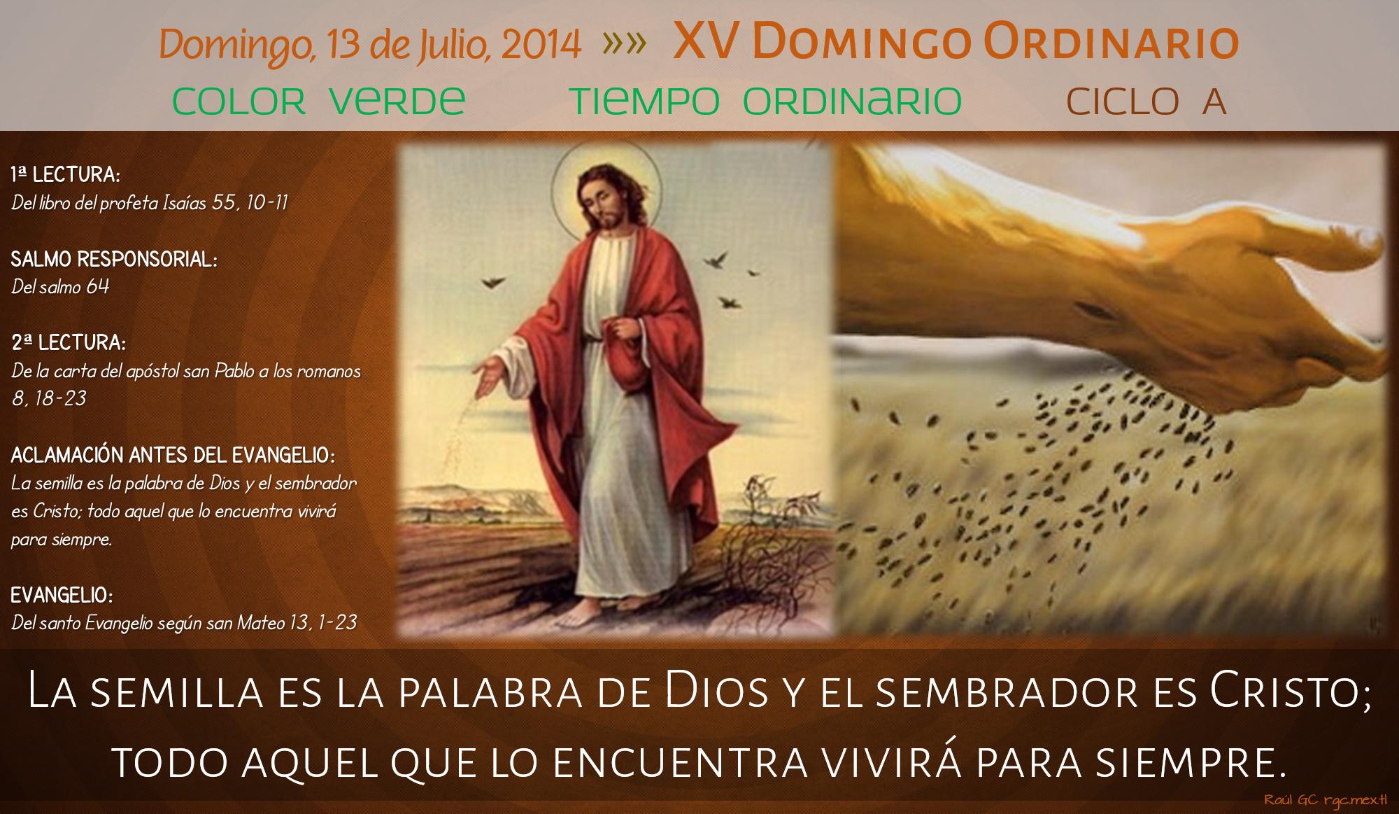 Ciclo A, XV Domingo Ordinario