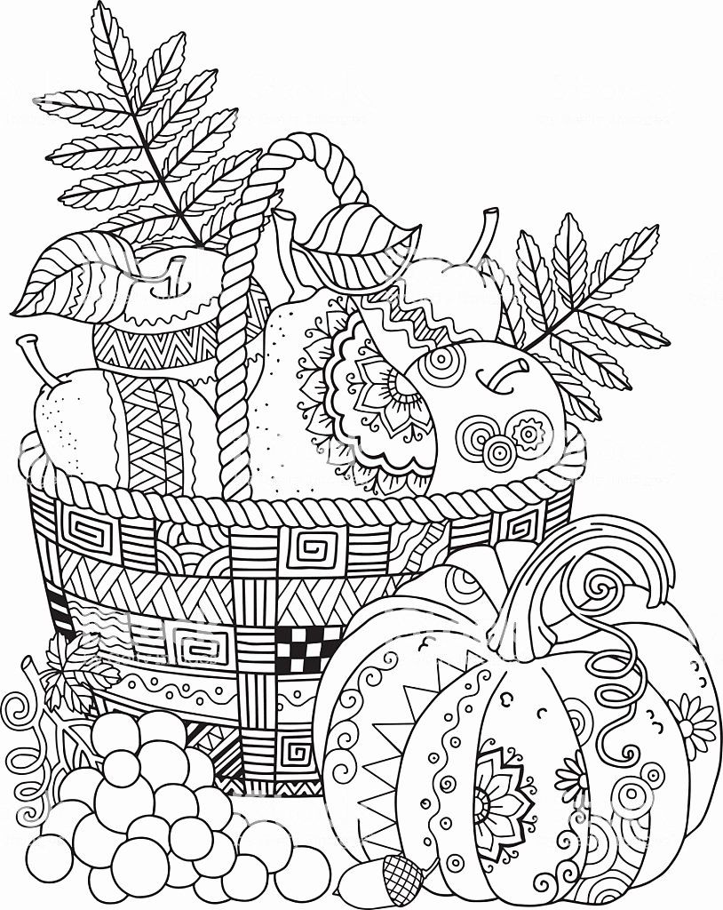 Thanksgiving Basket Coloring Pages Taken