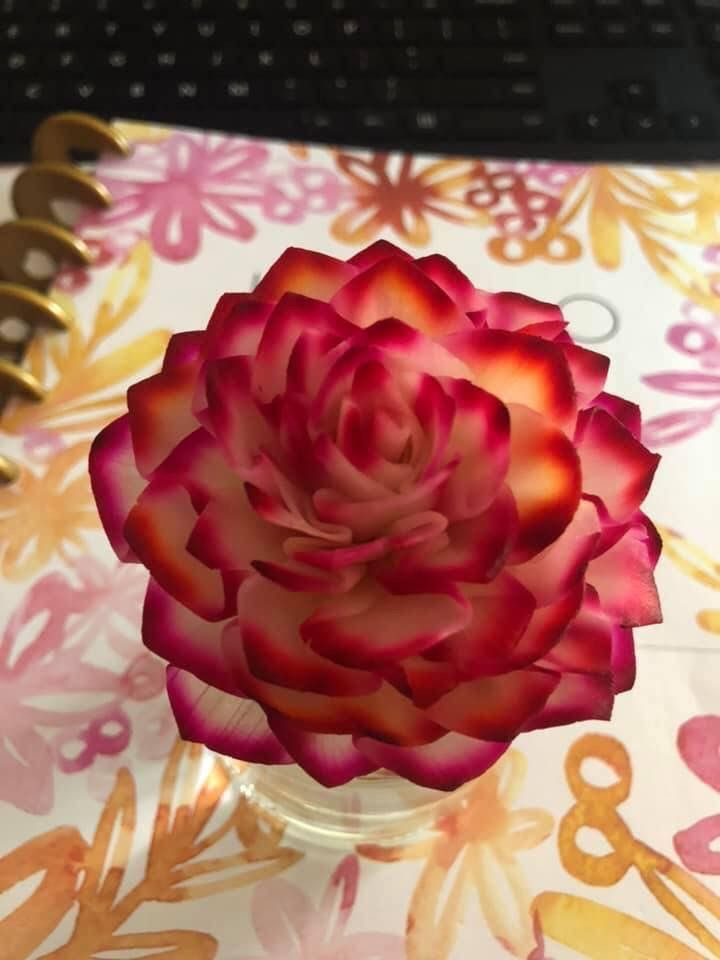 Fragrance flower scentsy scented wax warmer wax warmers