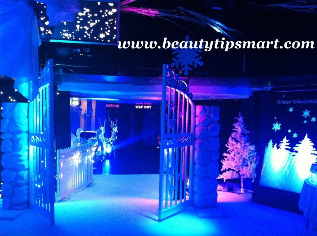 Top 10 Christmas Party Ideas Part - 21: Top 10 Christmas Party Themes Ideas 2013