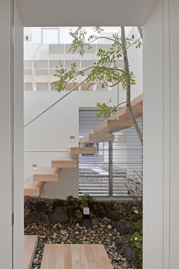 Opulent House: Best Type of House to Build in the Center City: Wonderful Indoor Garden With Floating Wooden Staircase ~ blacksambo.com Design Inspiration Inspiration