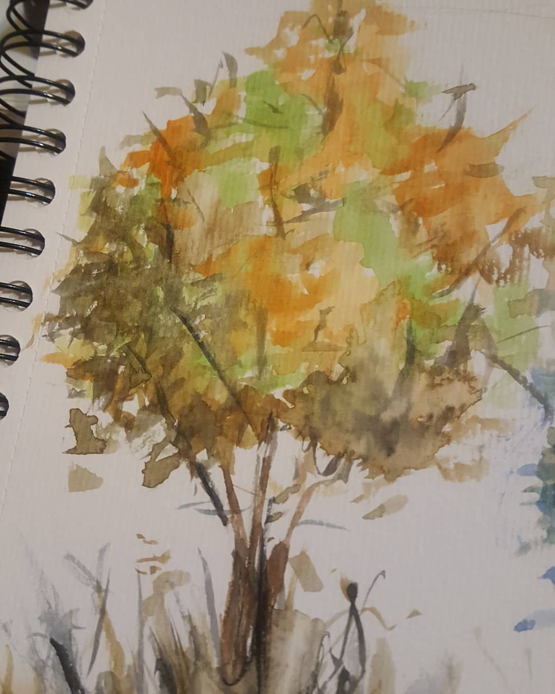 Acuarelas Probando Otro Tipo De Arbol Watercolor