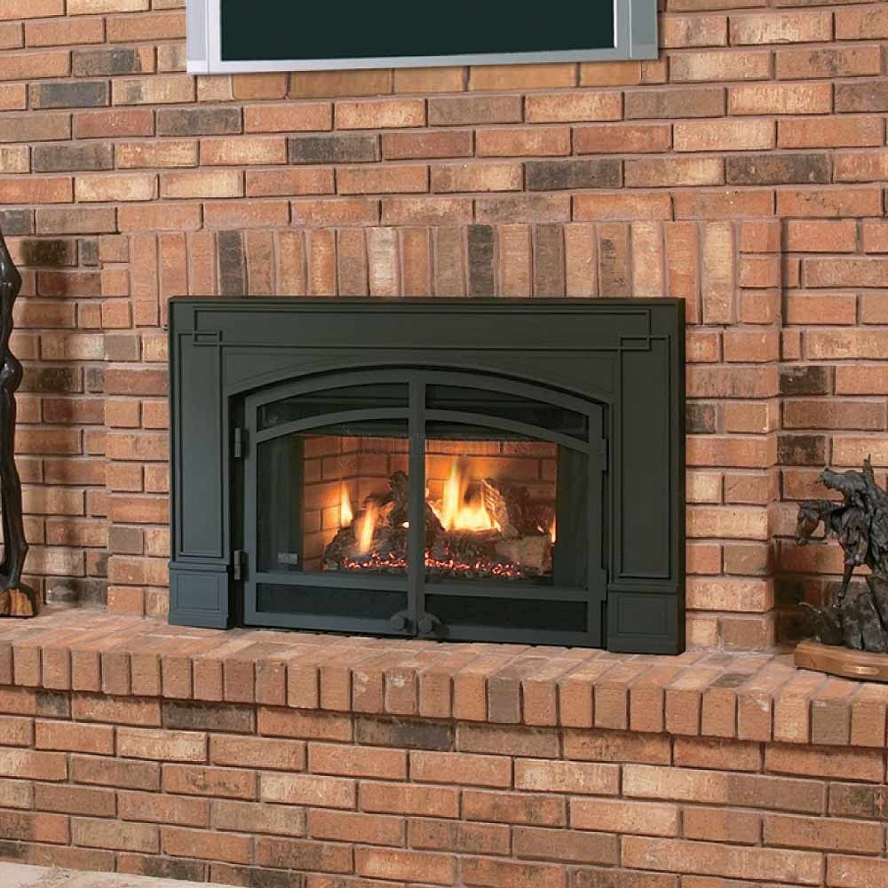 Elegant Napoleon Natural Gas Fireplace Insert With Arched Cast Iron Surround And  Door Kit  Fireplace Want To Turn Your Drafty Fireplace Into An Efficient  Heat ...