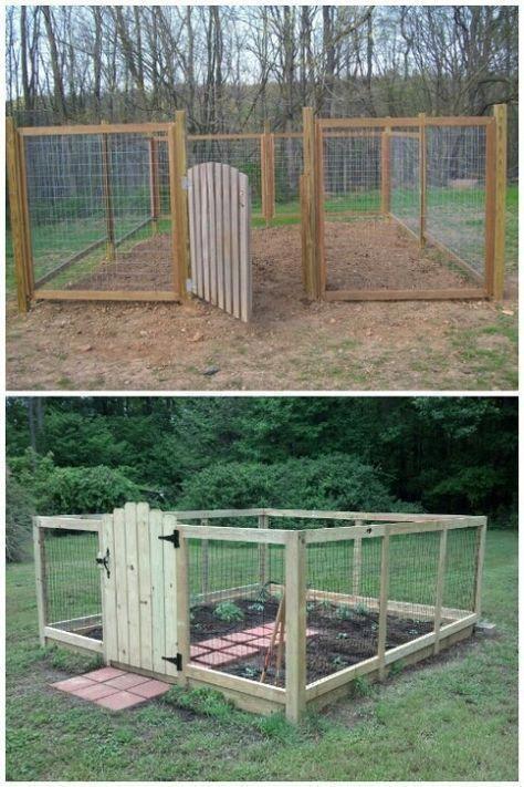 Raised bed with deer fence Deer-proof vegetable garden ...