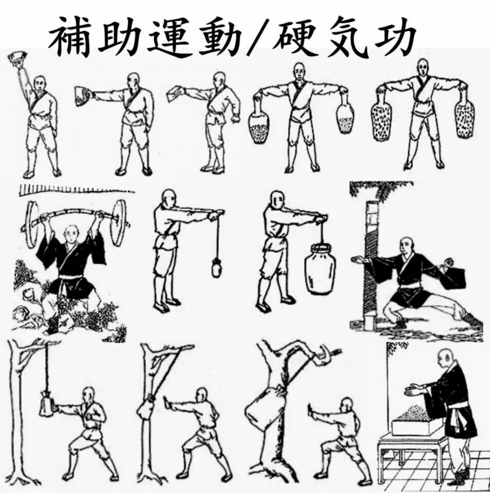 Image result for karate hojo undo equipment