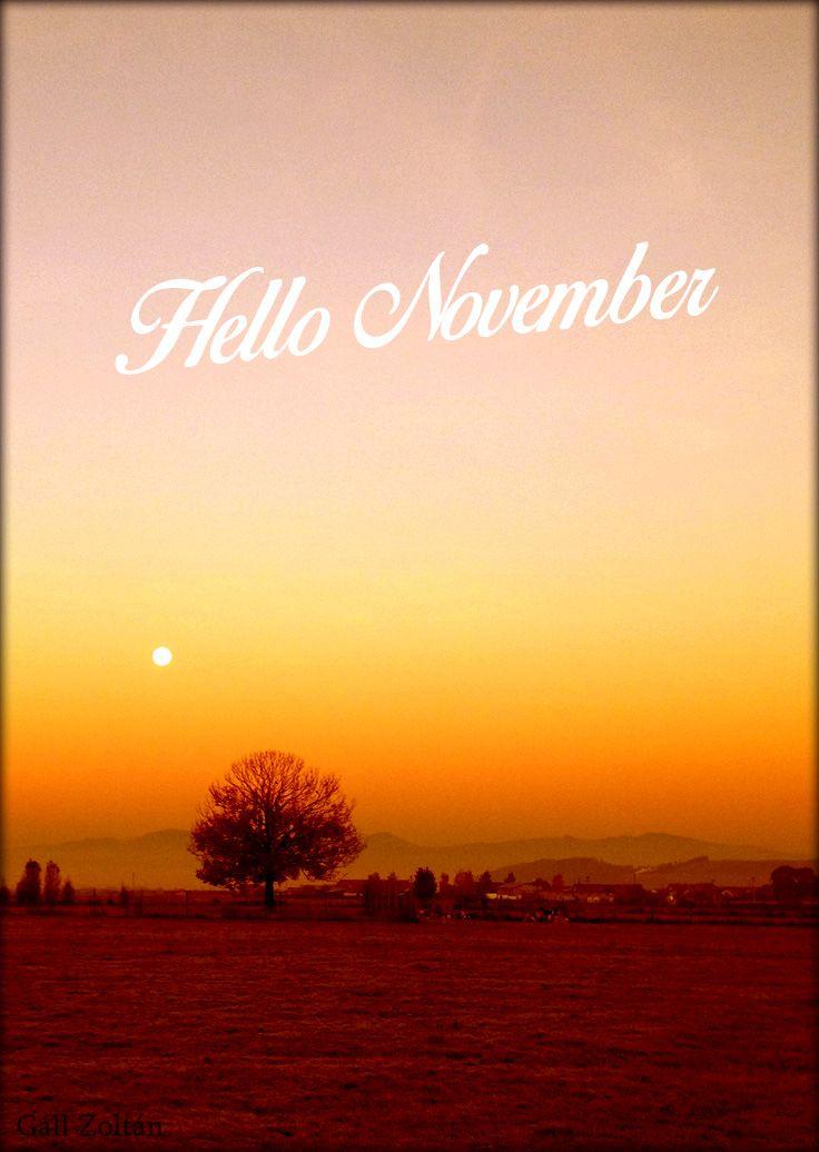 Hello November #hellonovemberwallpaper