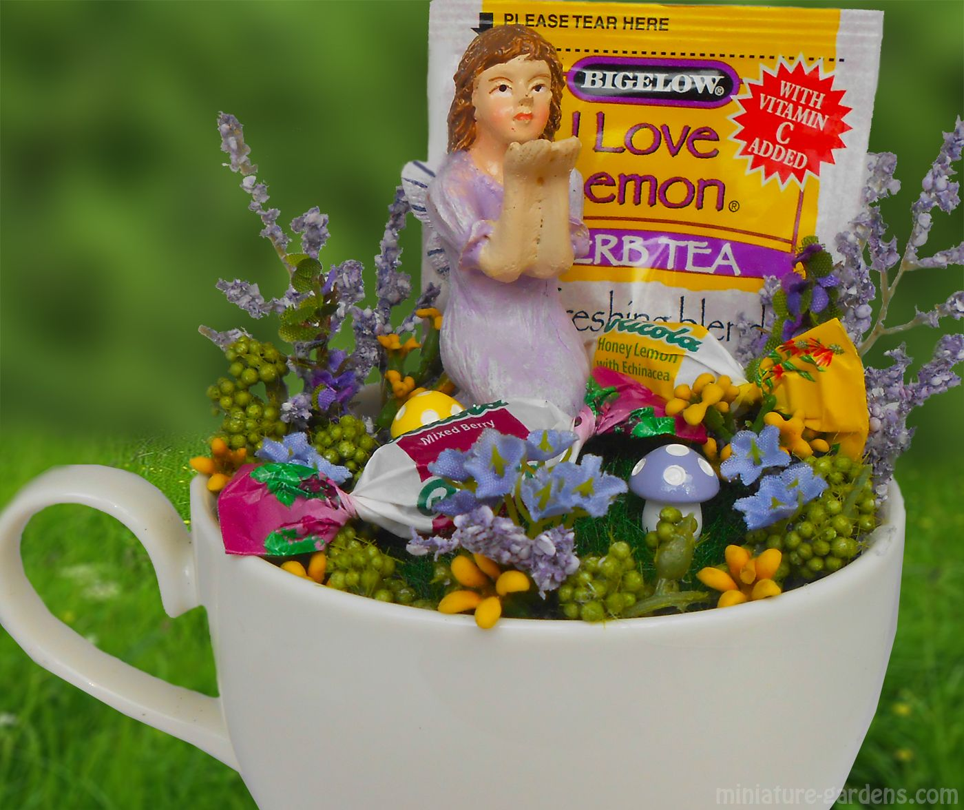 A tea cup fairy garden get well gift. | Pics from Fairy ...