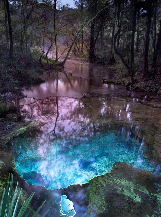 Mystic Spring Chipola River Marianna I Need To Find
