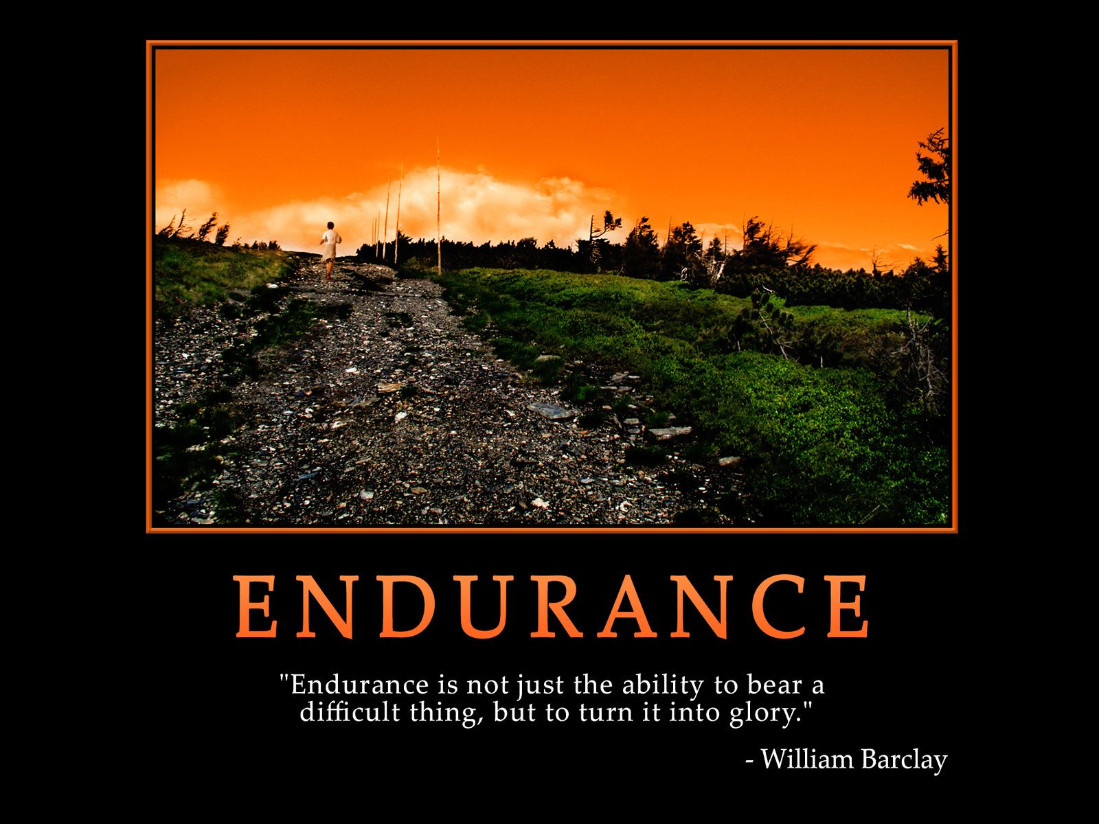 Endurance Quotes Finishing The Race   Quotes  Pinterest  Inspirational And