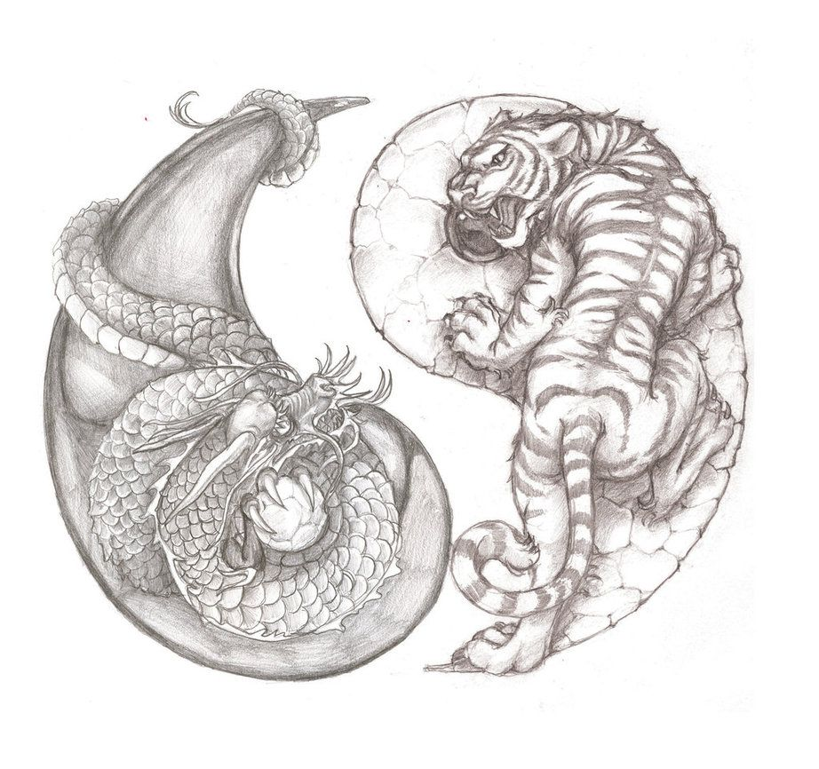 awesome tiger and dragon yin yang tattoo idea tattoo