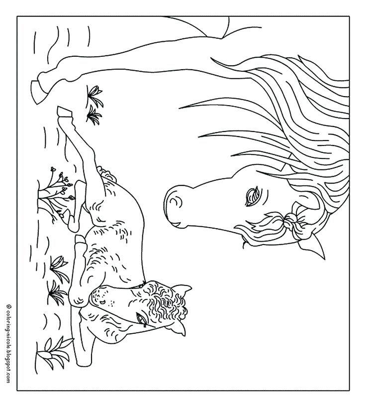 Paarden Kleurplaten Best Images On Paarden Kleurplaten