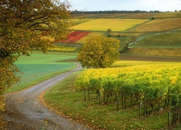 France Countryside View Images Travel Pinterest French - French country side