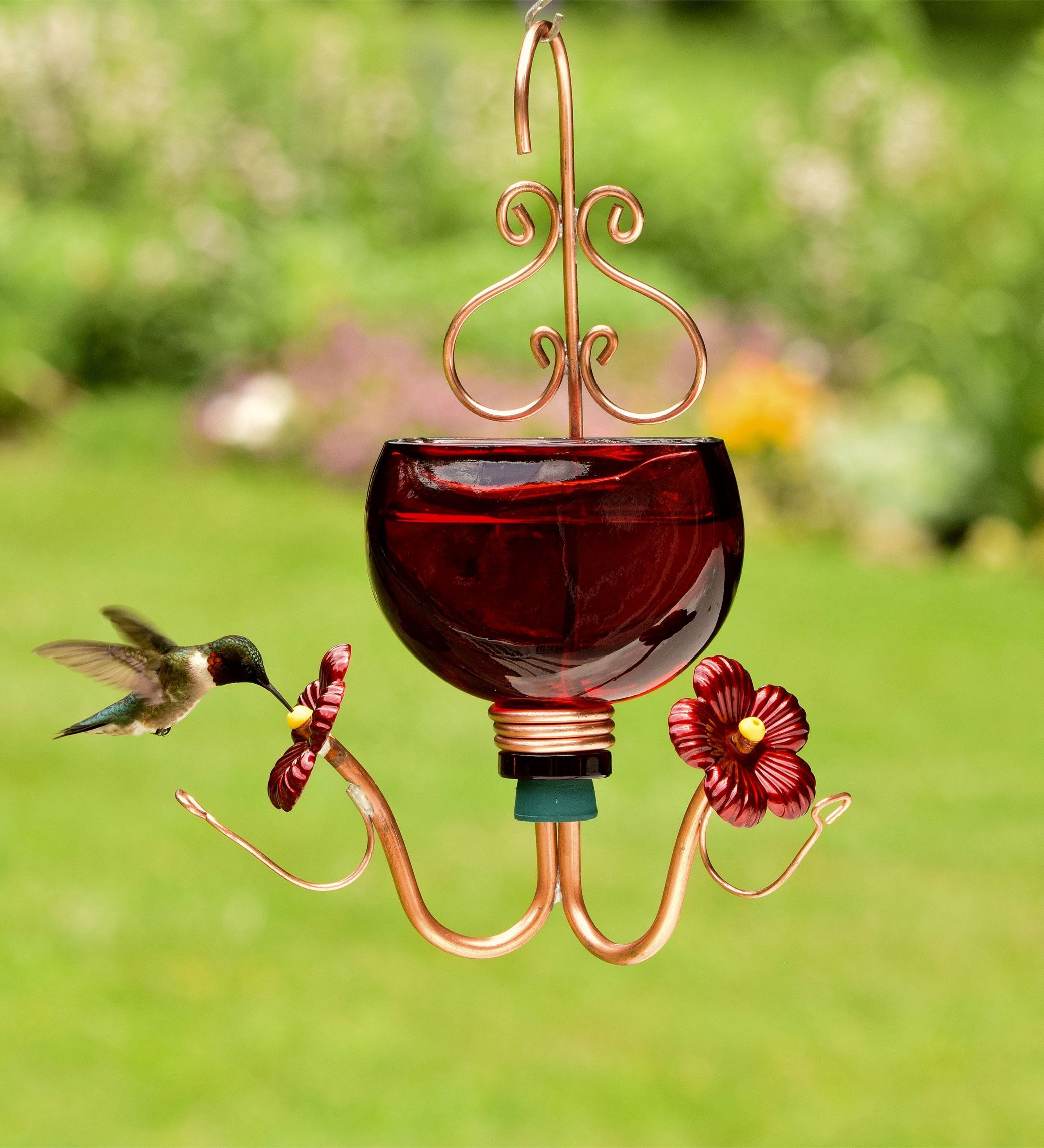 products unique globe best and feeders product bird yellow blown home hummingbirds hummingbird glass premium reviews of hand pet rave red decorative with by birds nectar ounces feeder natures