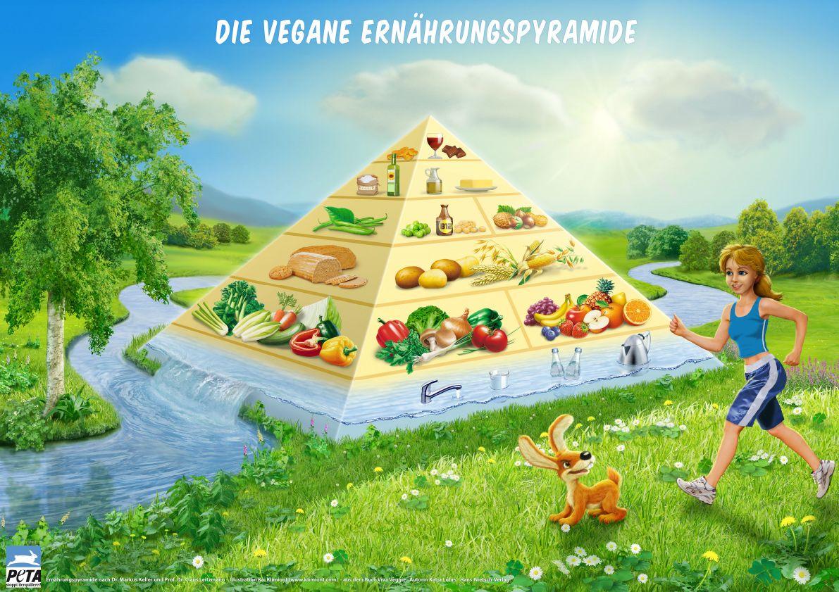 7 Regeln einer gesunden veganen Ernährung – Dr. med. Henrich ProVegan Stiftung