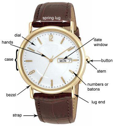 diagram of watch parts | ABC MENSWEAR | Pinterest