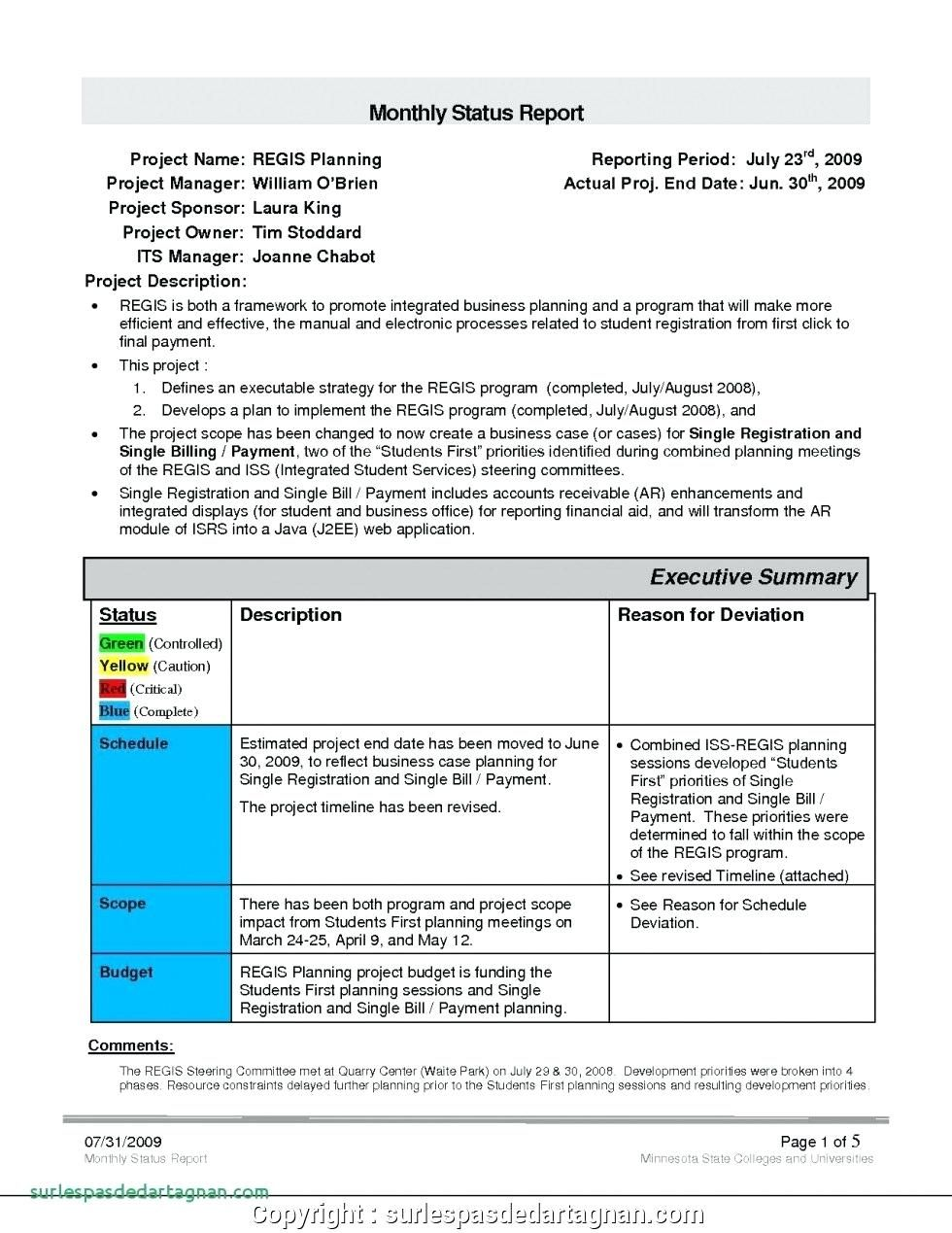 028 Monthly Sales Report Template Executive Manager Example