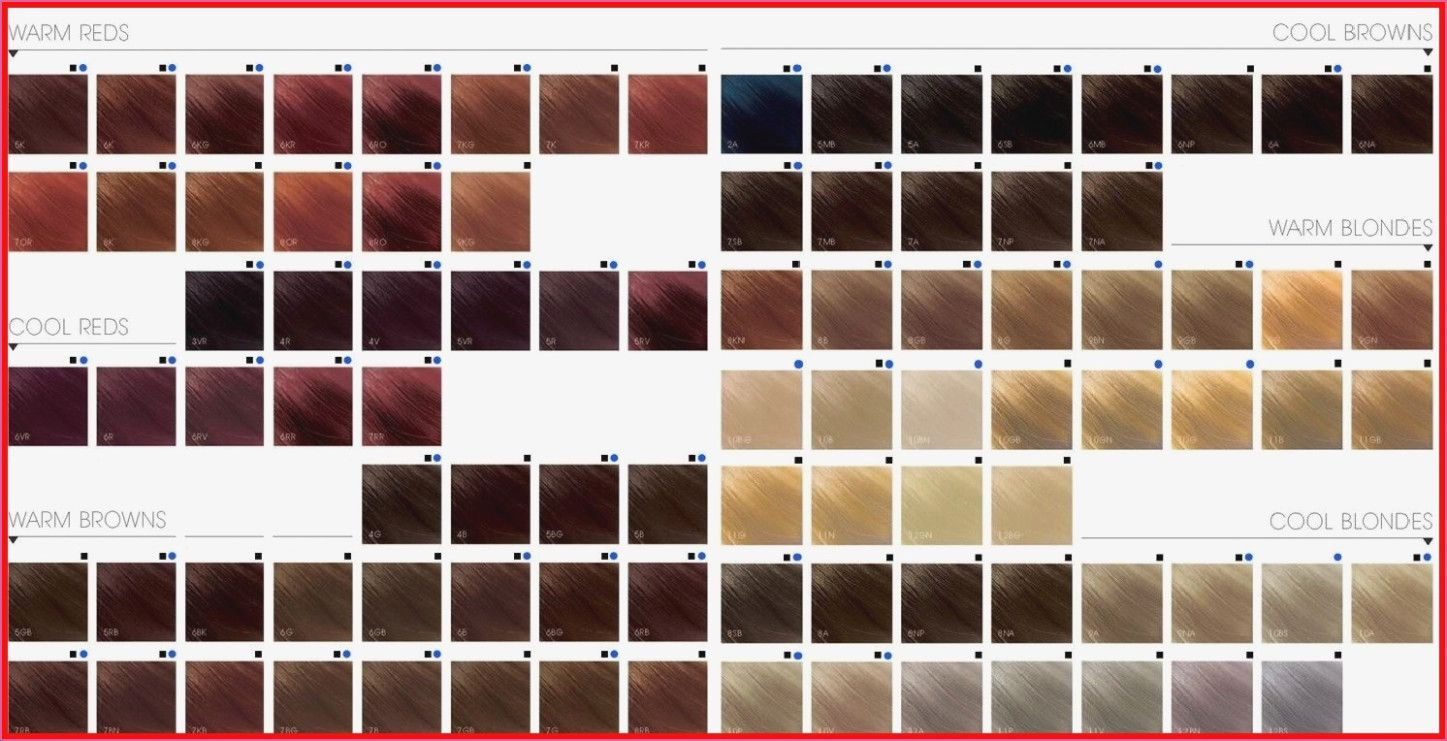 Pin On Goldwell Color Chart